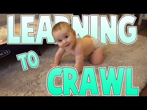 Learning To Crawl | Family Baby Vlogs
