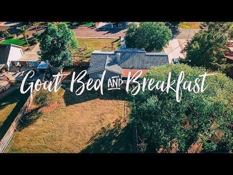 Goat Bed & Breakfast