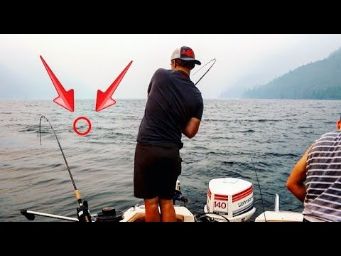 HUGE Bull Trout caught in Chilliwack Lake!!!