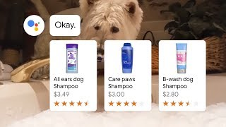 Pet lovers: Introducing Actions for your Google Assistant