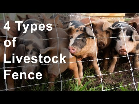 4 Types of Livestock Fence