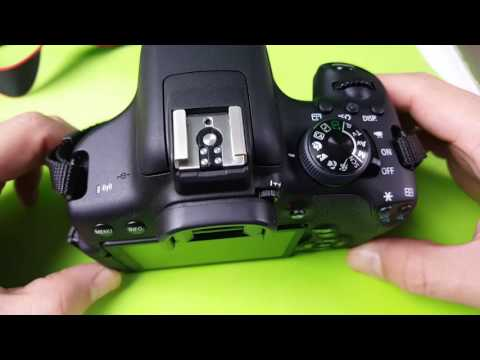 ALL CANON REBEL DSLRs: How to Format SD Card