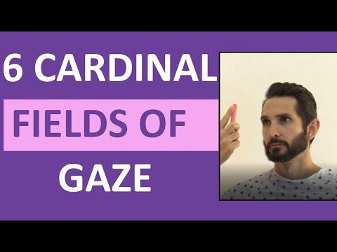 Six Cardinal Fields of Gaze Nursing | Nystagmus Eyes, Cranial Nerve 3,4,6 Test