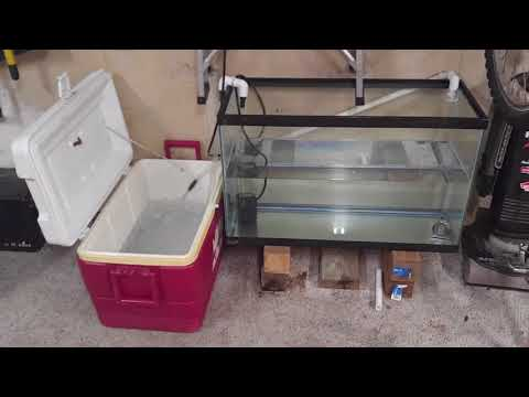 Dungeness Crab Tank Live Well Prototype 1