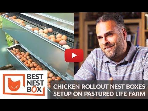 {Extended Version} Clean Unbroken Eggs on Pasture Life Farm - Best Nest Box