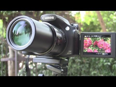 Canon SX60 HS Review - Macro and Video Capabilities demonstrated