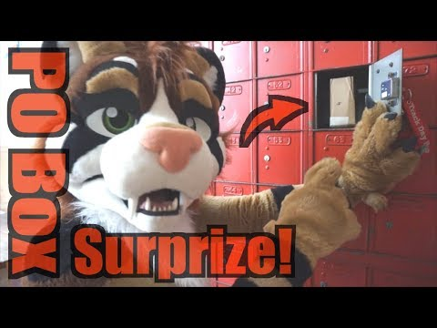 PO Box Surprize! (and address reveal)