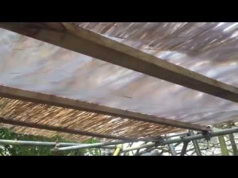 Exotic canopy made from scaffolding and bamboo / rushes