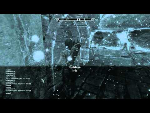 Skyrim How to level up your Companion / Follower on PC - Guide tip hint how to