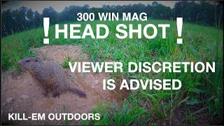 Graphic Head Shot (300 WIN MAG)