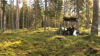 Förslag på nya jakttidsregler kritiseras - Nyheterna (TV4)