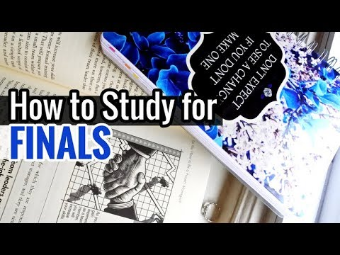 How to Study for Finals // Study With Me for Exams
