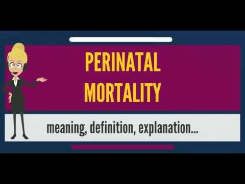 What is PERINATAL MORTALITY? What does PERINATAL MORTALITY mean? PERINATAL MORTALITY meaning
