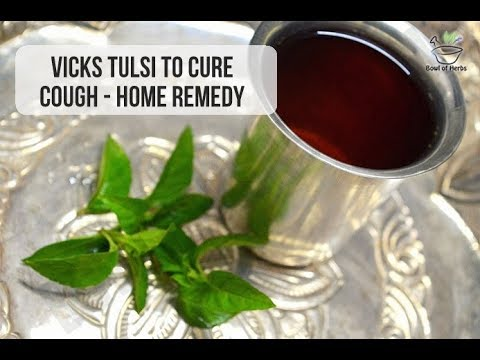 Vicks Tulsi (Wild Mint) to cure cough - Home remedy