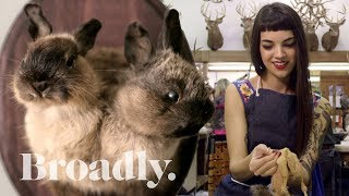 The Young Taxidermist Giving New Life to Dead Animals