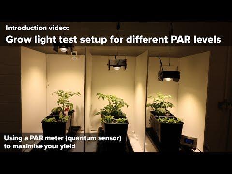 Grow light test setup of different PAR (PPFD) levels