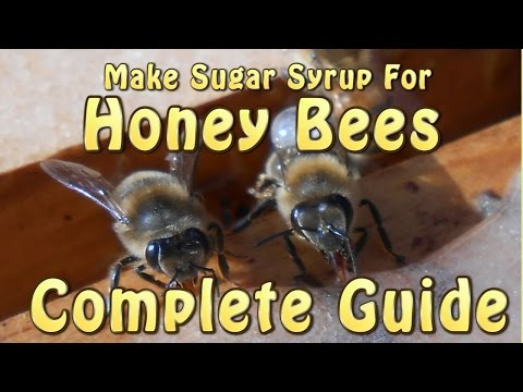 Making Sugar Syrup For Honey Bees Complete Guide