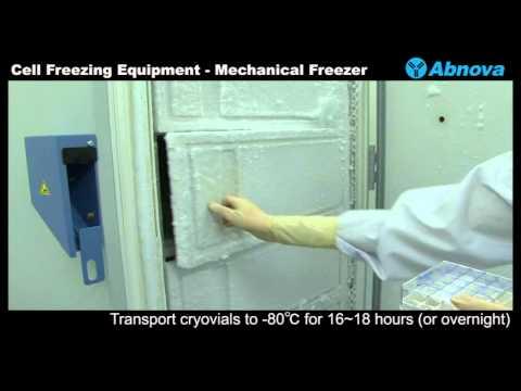 Cell Freezing Equipment - Mechanical Freezer