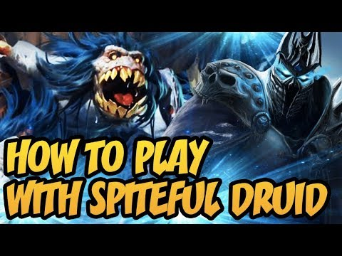 Hearthstone: How To Play With Spiteful Druid