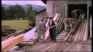 Film Der Schandfleck 1956