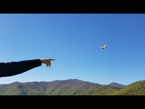 Paper Airplane Flight at 3,700 feet!