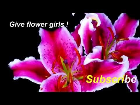 very nice - giving girls flowers !!=))