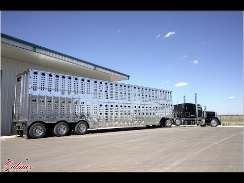 Polishing a HUGE aluminum Cattle trailer! THE BEST SHINE EVER!