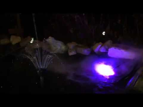 Pond with fogger and fountain