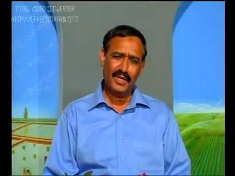 Curing swollen udder.Pakistan Dr.Ashraf Sahibzada
