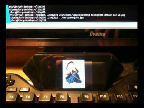 Linux module for Logitech G19