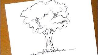 كيفية رسم شجرة
