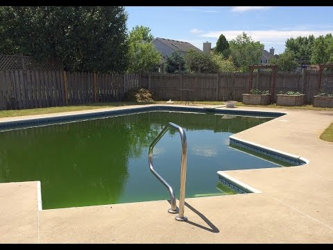 Swimming Pool Care Video Testimony - From Green Algae To Perfectly Clear
