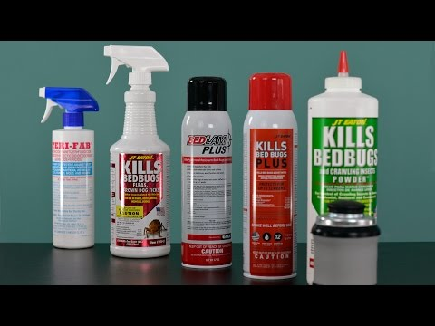 Professional Bed Bug Kit Review