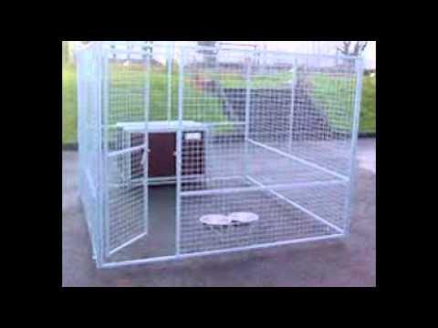 Dog Kennels Northern Ireland