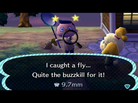 Animal Crossing: New Leaf - Day 35: Fly Catcher