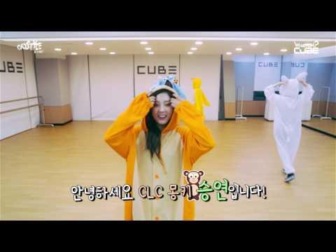 Learn Kpop: CLC Members Names Profile 2017 씨엘씨