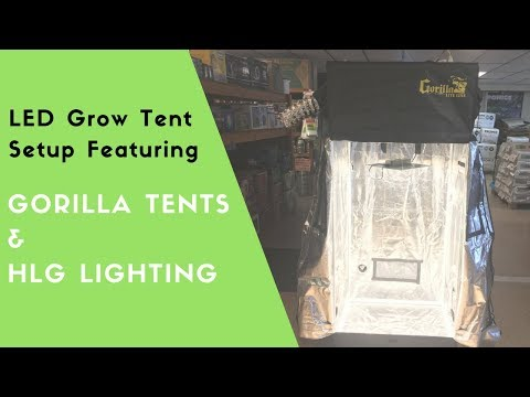 Tips on Setting up a Gorilla 2x2.5 Grow Tent with HLG 100
