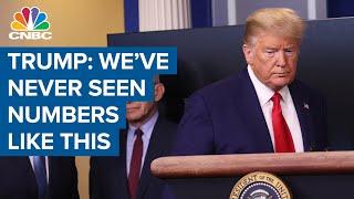 Trump on coronavirus: U.S. facing a 'very, very painful two weeks'