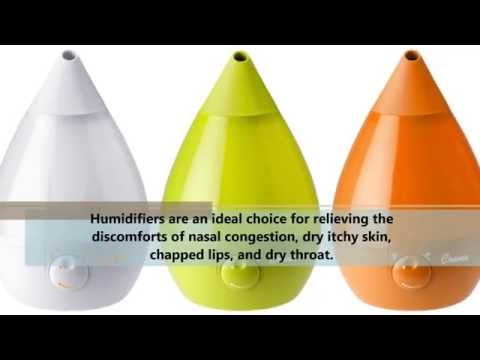 Best Humidifier Review - Does Crane Humidifier Work?