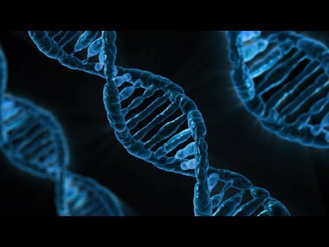 DNA Testing 101: How to Choose the Right Test for You