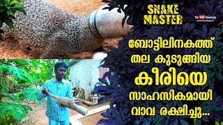 Vava adventurously rescues a mongoose whose head got stuck in a bottle | Snakemaster EP 490