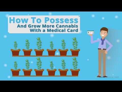 How to Grow and Possess More Cannabis with a Medical Card ?
