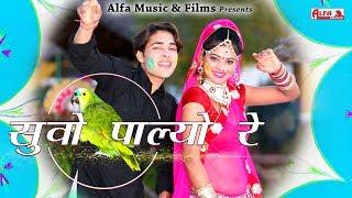 Suvo Palyo Re | Rajasthani Fagan Song | Alfa Music & Films | Video 2019