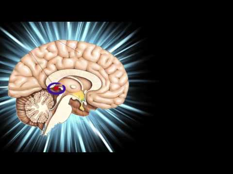 The Pineal Gland Power!