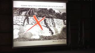 #x202b;שיטת תיארוך טרסות במרחב ירושלים - פרופ