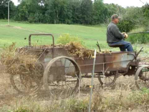 Belgian Draft Horse Farming Spreader
