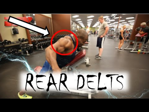 REAR DELTS!  |  Best Exercises for Working the Back of Your Shoulders