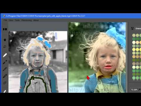 Colorize black and white photos quickly