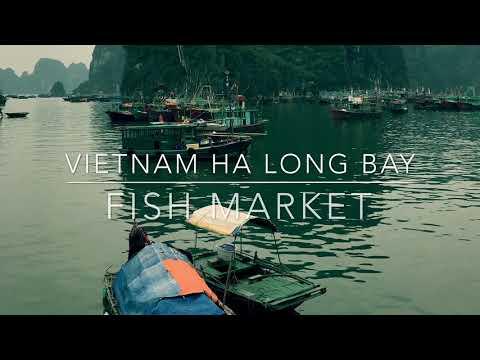 ha long bay fish market