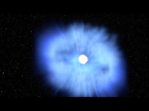 The 'Cow' Explosion: Black Hole Eats White Dwarf